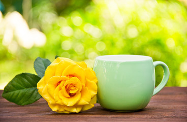 Cup of tea and rose on background of spring greens. Tea in the garden. Cup of coffee and fragrant yellow rose.