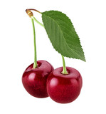 Sweet cherry berry. Two on a branch with leaf