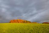 Über die Felder und Wiesen von Hennef