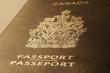 Passport cover toned blurred photo