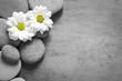 Set of white flowers on pebble - 198242971