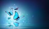 Fairy Butterflies On Water  - 198253102