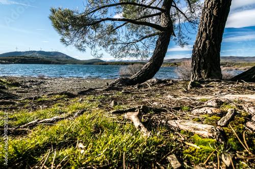 Foto op Aluminium Grijze traf. lago
