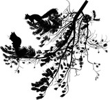 small two black squirrels and pine tree branch on white