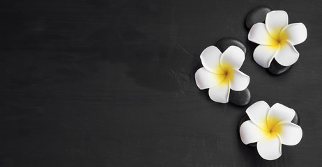 Spa still life with frangipani and massage stones top view, wellness background