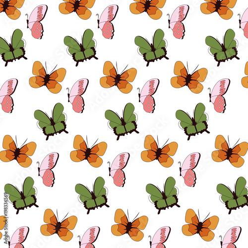 piękno motyl owad tło