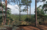 Cassepot rock panorama in Fontainebleau forest