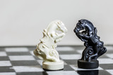 Chess game rivals. Horses on a chessboard.