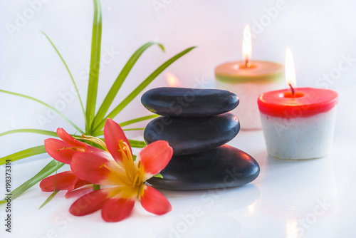 Beautiful spa compostion with black massage stones, red flowers and burning candles on white glossy background