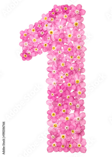 Arabic numeral 1 one from pink forget me not flowers isolated on arabic numeral 1 one from pink forget me not flowers isolated mightylinksfo