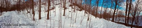 paysage d'hiver - 198397350