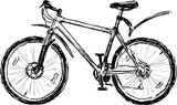 Sketch of a sports bicycle