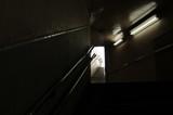 地下鉄への階段