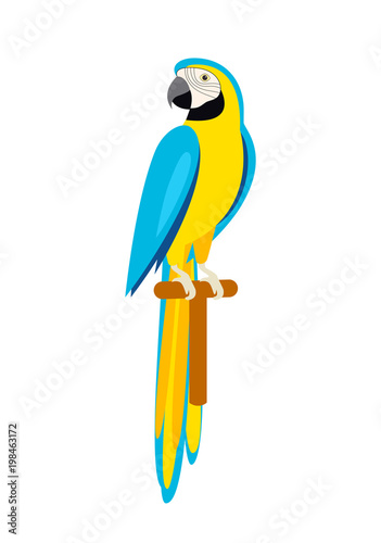 Fototapeta Cartoon cute parrot. Beautiful Ara parrot. Isolated on white.