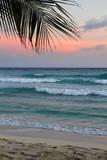 Tropical beach - 198471900