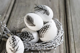 Easter white eggs decorated with feather in nest on rustic background - 198491784