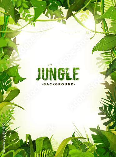 Tło tropikalnych liści dżungli