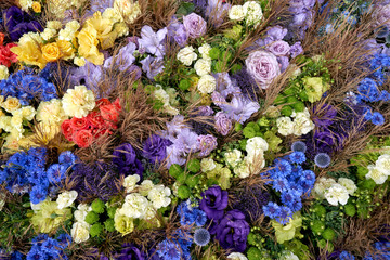 Colorful summer flowers background. Top view