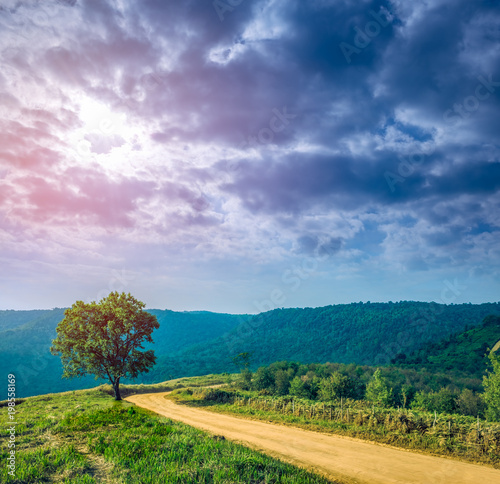 Fotobehang Nachtblauw Landscape in nature of sky with cloudy and roadway through forest.