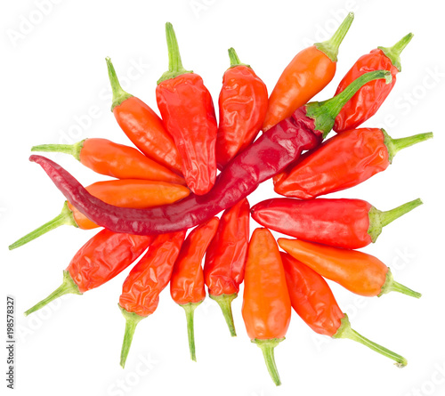 Plexiglas Hot chili peppers Hot peppers isolated on a white