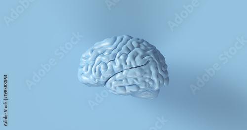 3d błękitny anatomiczny mózg ilustraci modela mężczyzna