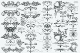 Big collection of vector flourishes for design - 198606149