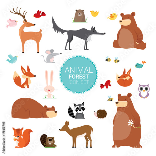 Creative Cute Wild Forest Animals vector illustrations