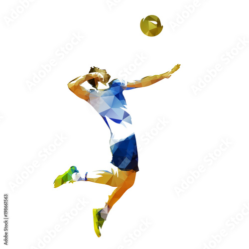 Fototapeta Volleyball player serving ball, abstract polygonal vector illustration