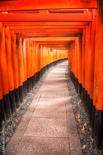 Fotobehang Kyoto Inari Fushimi Shrine