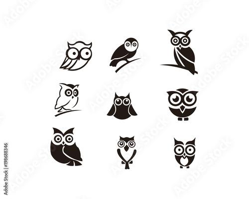 Fotobehang Uilen cartoon owl animal bird