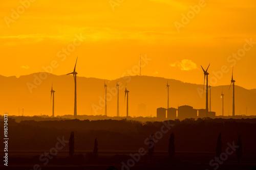 Tuinposter Honing Wind farm of wind turbines