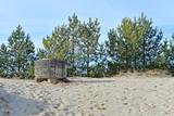 Fototapeta  - wild entrance to unguarded beaches © karolinaklink