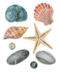 Watercolor set of isolated objects sea shells, starfish, stones, pearls © Irina Violet