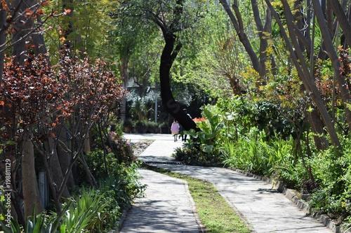 Fotobehang Cyprus Cyprus botanical garden
