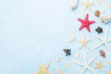 Beautiful composition from seashells and starfish. Summer holidays, travel and trip background. Top view.