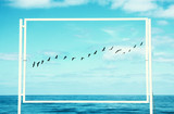 surreal enigmatic picture of flying birds and frame . beach landscape. - 198868751