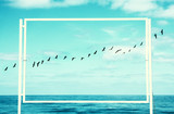 surreal enigmatic picture of flying birds and frame . beach landscape. - 198869380