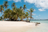 Small Island with palm trees and white sand beach , San Blas Islands