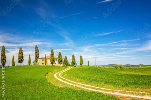 Aluminium Toscane Tuscany landscape at spring , Italy