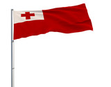 Isolate flag of Tonga on a flagpole fluttering in the wind on a transparent background, 3d rendering. - 198954359
