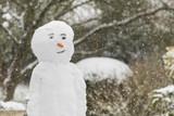 Bonhomme de neige avec une carotte pour le nez - 198955721