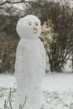 Bonhomme de neige avec une carotte pour le nez - 198956372
