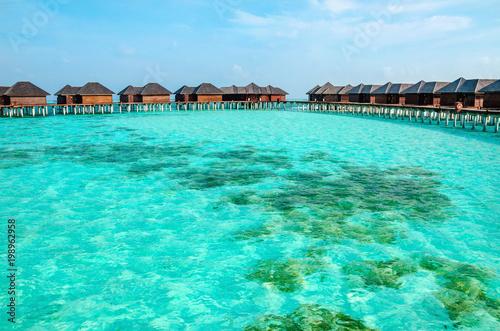 Foto op Plexiglas Groene koraal Over water bungalows on a tropical island, Maldives