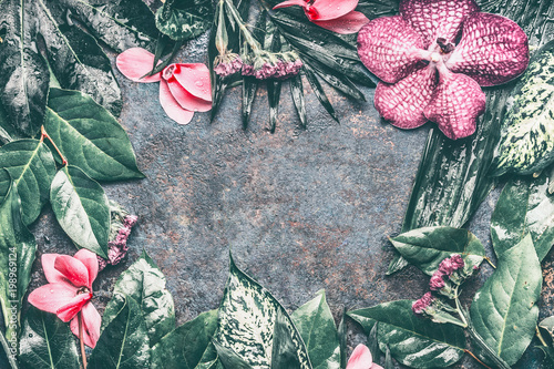 Tropical leaves and pink exotic flowers background, top view, frame