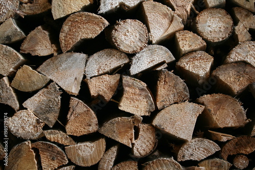 Foto op Aluminium Brandhout textuur Holzstapel 1