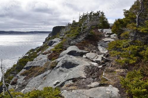 rugged hiking trail along the coast of Newfoundland, Father Troy Path near Flatrock - 198979318