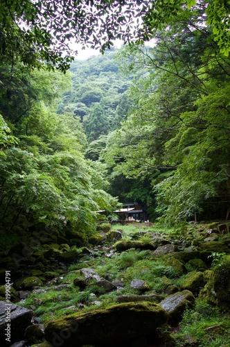In de dag Olijf Akame 48 Waterfalls - Japan