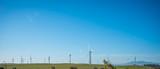 Windmill renewable energy
