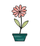 flower daisy in a pot decorative vector illustration design