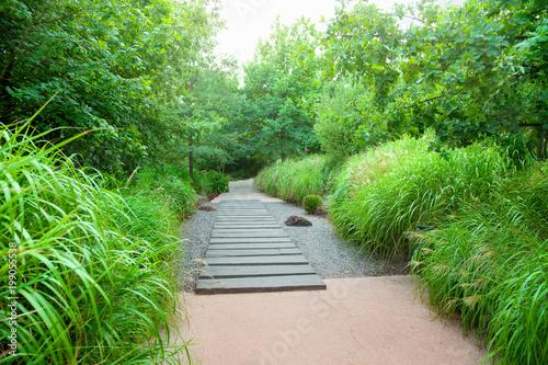 Foto op Plexiglas Groene City park